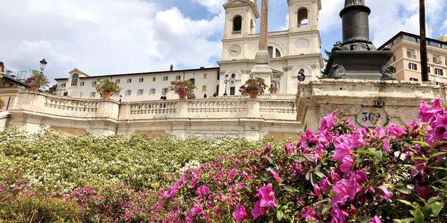 Azaleen auf der Spanischen Treppe zum Geburtstag Roms